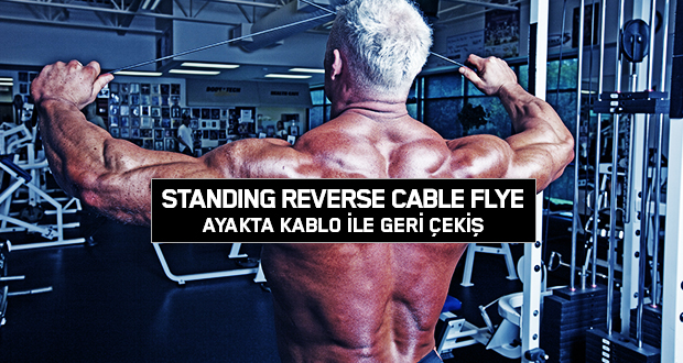Standing Reverse Cable Flye