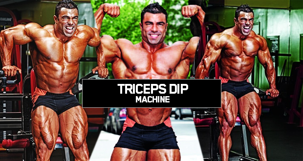 Triceps-Dip-Machine