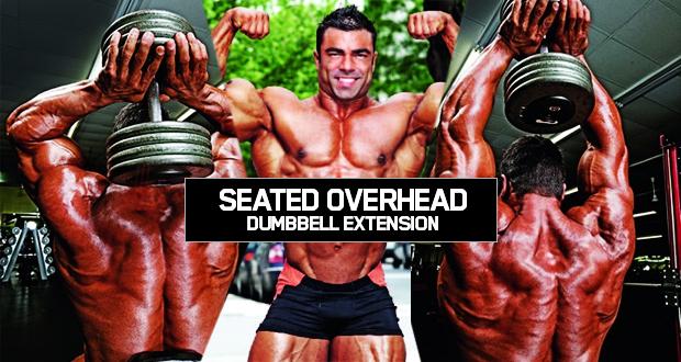 Seated Overhead Dumbbell Extensıon