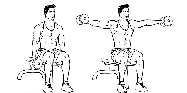 Seated-Side-Lateral-Raise-2